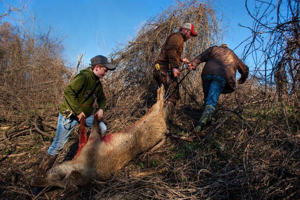 10-hog-hunting-masculinity-adapt-1900-1
